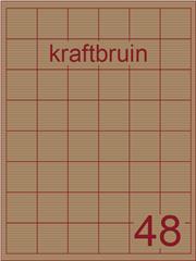 Etiket kraft bruin 35x35mm (48) ds100vel A4