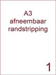 Etiket A3 wit papier afneembaar 297x420 ds 500vel randstripping 2 mm (A3/1-1 RS)