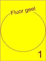 Etiket fluor geel rond ø205mm (1) ds200vel A4